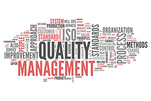 Standards and Certifications for IT and ITES Outsourcing