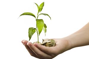 Competitiveness Through Enterprise Sustainability